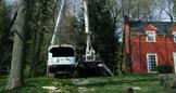 Tree Service Kent Ohio
