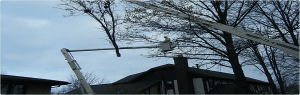Tree Pruning in Akron, OH