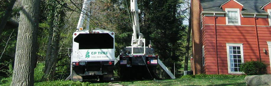 Tree removal truck in Akron, OH