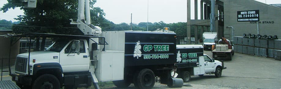 GP Tree tree trimming truck serving Massillon, OH